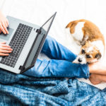 How to Work From Home Effectively: Tips for Adapting to the New Normal
